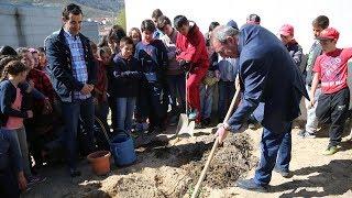Dia Mundial da Árvore - Agrupamento de Escolas Gomes Monteiro | 2019 | BOTICAS