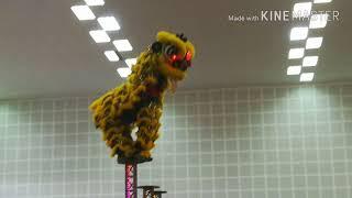 preview picture of video '[吉隆坡關聖宮龍狮團] 在 [梳邦华小新春开年庆典] 表演 (上午班)'