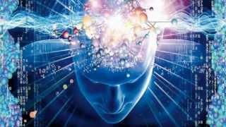 האם יש לך מוח איכותי?