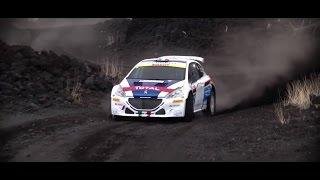 Peugeot 208 T16 e Paolo Andreucci sui tornanti dell