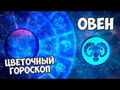 Прогноз на 2015 астрологи