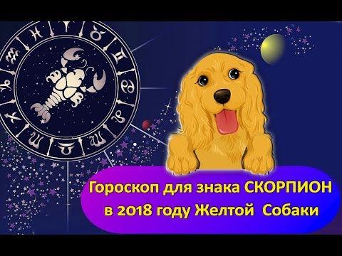 Раки гороскоп 2014