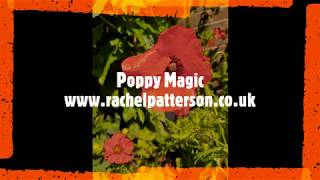 Magical Plants: Poppy