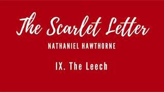 Scarlet Letter - Chapter 9