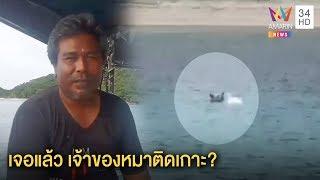 """ทุบโต๊ะข่าว:เปิดชีวิต""""ไอ้กำนัน"""" หมาติดเกาะ 5 ปี  ทำไมอยู่เดียวดายว่ายน้ำขอของกิน10/09/62"""