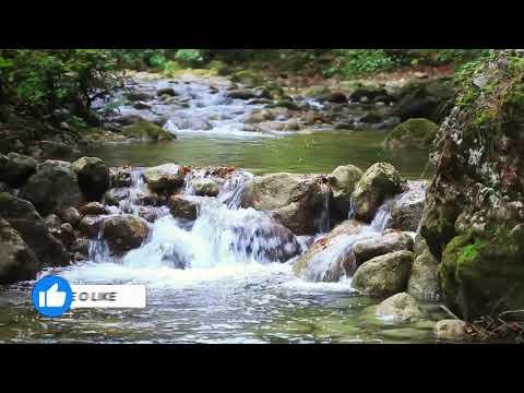 guas lentas de rio-planeta terra incrvel cenrio natural