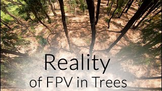 FPV Drone vs Trees (Reality of flying in Trees)