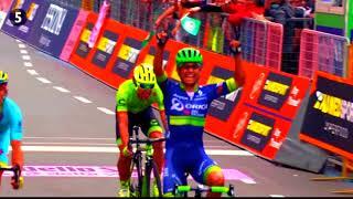 Чемпионы! Лучшие моменты в велоспорте в 2к17  Champions! The best moments in cycling in 2k17