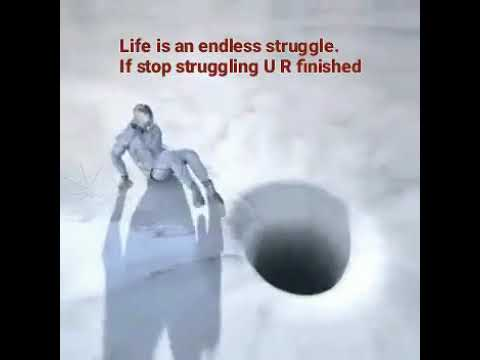 Life is an endless struggle...If stop struggling you are finished...