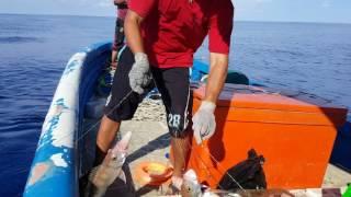 Fishing In Brunei