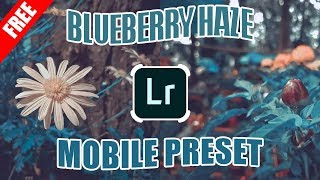 free lightroom presets for portraits mobile - मुफ्त