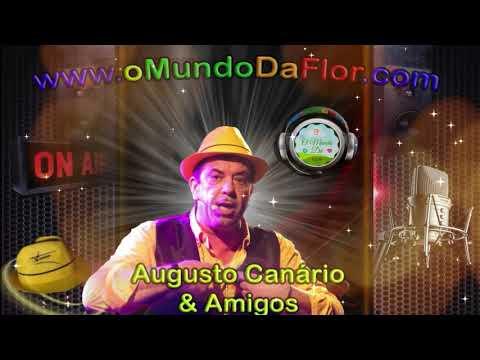 Augusto Canário & Amigos