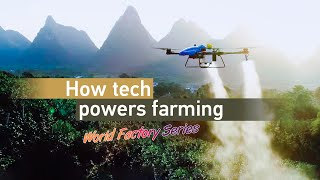 CGTN Exclusive: How a drone is reshaping the age-old profession of farming