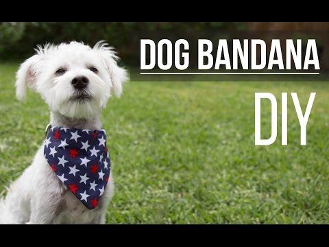 DIY Dog Bandana / Bandana de Mascota