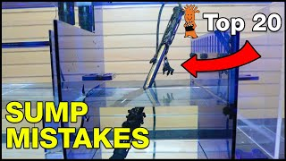 Top Aquarium Sump Mistakes You Don't Want To Make! But Do You Even Need One?