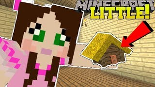 Minecraft: LITTLE HOUSES!!! (TINY HOUSES WITH SECRET ROOMS!) Custom Command