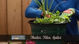Plant A Thriller, Filler, Spiller Container Garden
