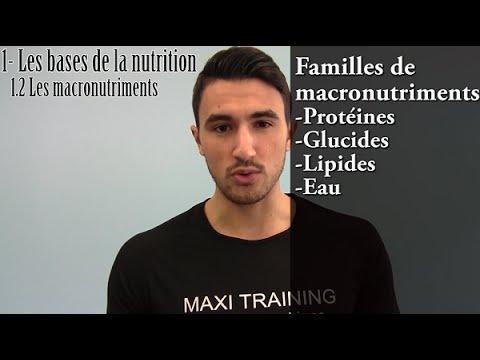 Les systèmes de létude du bodybuilding