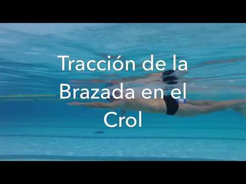 Video 18: Tracción de la brazada en el crol