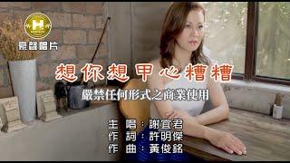 謝宜君-想你想甲心糟糟【KTV導唱字幕】1080p