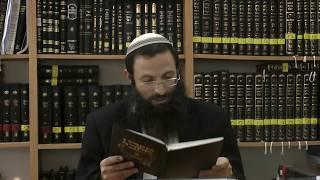 באר הגולה הבאר הראשון שיעור 7 הרב אריאל אלקובי שליט''א