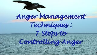 Anger Management Techniques: 7 Steps to Controlling Anger