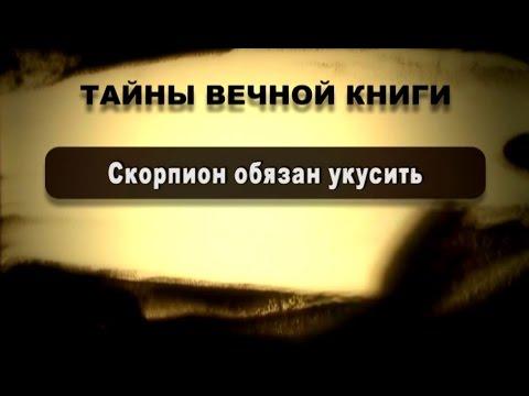 Тайны вечной книги. Скорпион обязан укусить