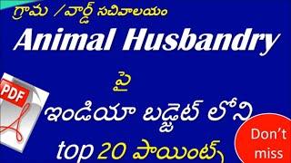 Animal Husbandry   AP Grama/Ward Sachivalayam Recruitment  