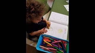 DIY 2- 3 Year Old Interactive Notebook! Preschool Prep