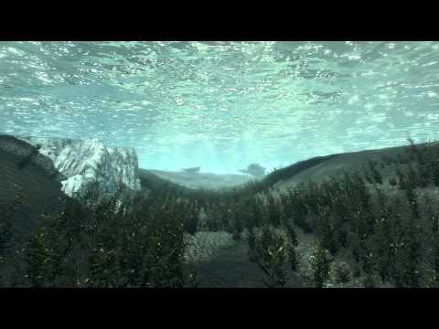 Видео Баг в Скайриме под водой