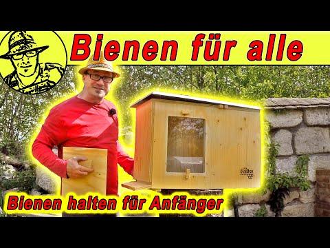 , title : 'Bienen halten, ohne Imker zu sein: Die BeeBox im Selbstversorger-Garten