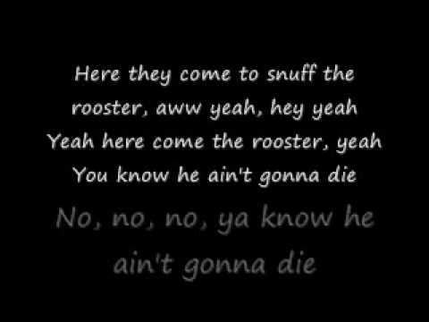 Rooster-Alice In Chains lyrics