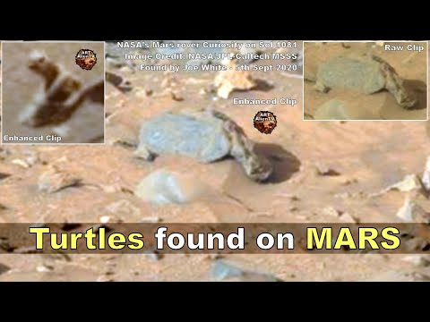 Mars en vreemde zaken