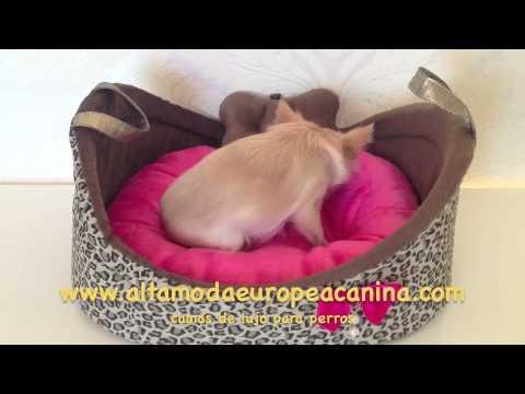 camas lujo perros