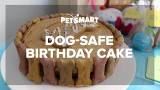PetSmart Kitchen: Doggie Birthday Cake