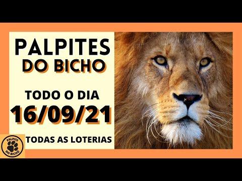 PALPITE PARA O JOGO DO BICHO DE HOJE DIA 16/09/2021  PALPITES DO BICHO TODAS AS BANCAS E  DIA TODO