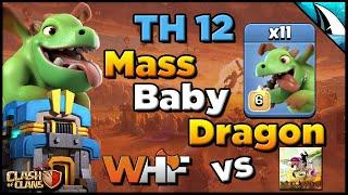 *Mass Baby Dragon TH 12!!* WHF vs King Jeffrey - CWL Invite Recap | Clash of Clans