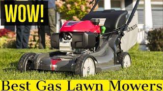 Best Gas Lawn Mower in 2020 (Cheap & Self Propelled)