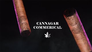 Cannaline Marketing - Video - 1