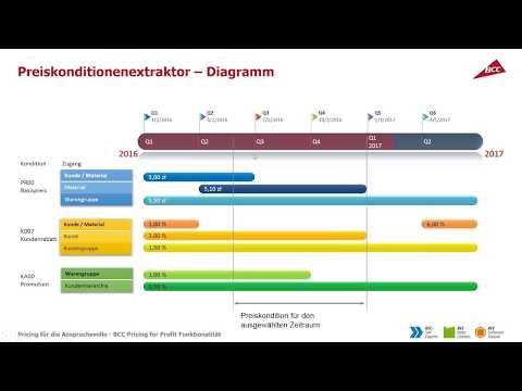 BCC Pricing for Profit – Preisverwaltung im SAP-System für Fortgeschrittene