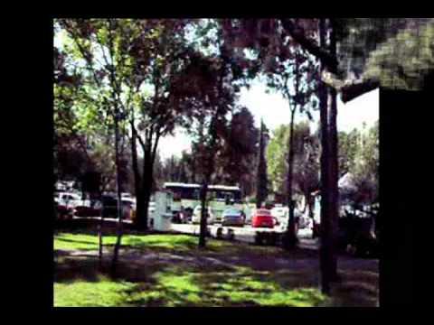 AnaContreras Video