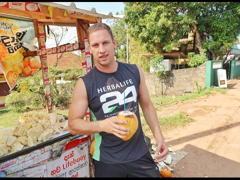 Hoildays to Sri Lanka – A Beautiful Holiday Destination