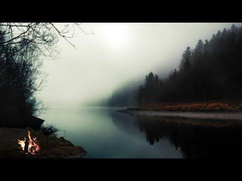 Звуки природы Сверчки, лягушки и пение птиц для глубокого сна