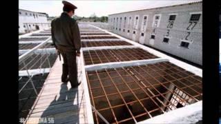 Курьёзы тюремной жизни