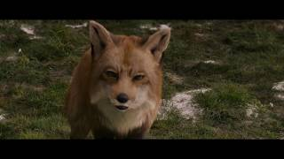 The Chronicles Of Narnia - Fox To Stone (HD)
