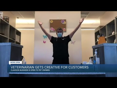 We're Open Detroit: Clawson veterinarian tells pet owners 'we're open' through song