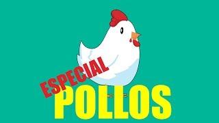 especial POLLOS