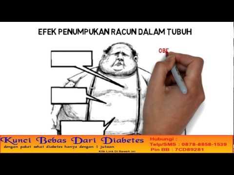 Sistem penurunan berat badan Ani Lorak