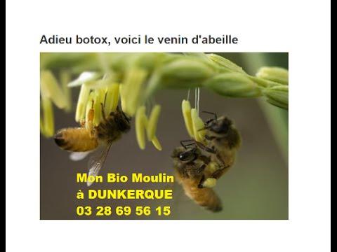 cr me visage au venin d 39 abeille dunkerque mon bio moulin dunkerque blog de mon bio moulin. Black Bedroom Furniture Sets. Home Design Ideas
