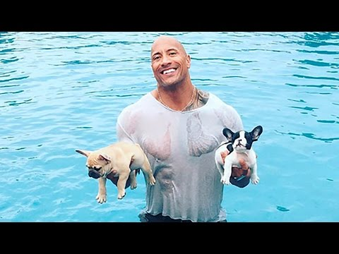 Dwayne 'The Rock' Johnson Saves Drowning Puppies from Pool